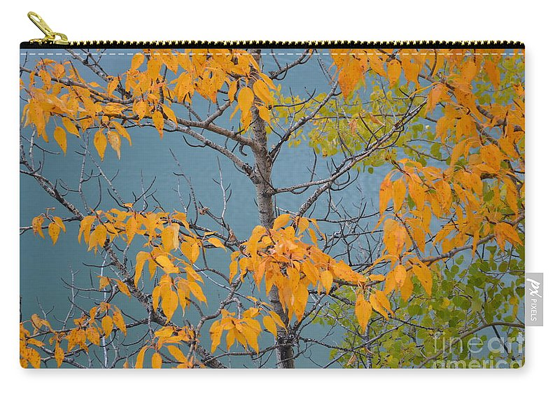 Green Carry-all Pouch featuring the photograph Greenbacks And Klondike Gold by Brian Boyle
