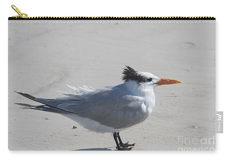 Tern Carry-all Pouch featuring the photograph Tern by Christiane Schulze Art And Photography