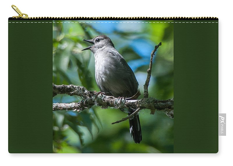Bird Carry-all Pouch featuring the photograph Grey Catbird by Richard Kitchen