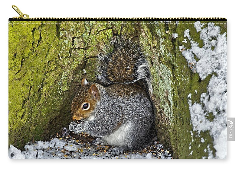Rolleston On Dove Carry-all Pouch featuring the photograph Grey Squirrel With Its Food Store by Rod Johnson