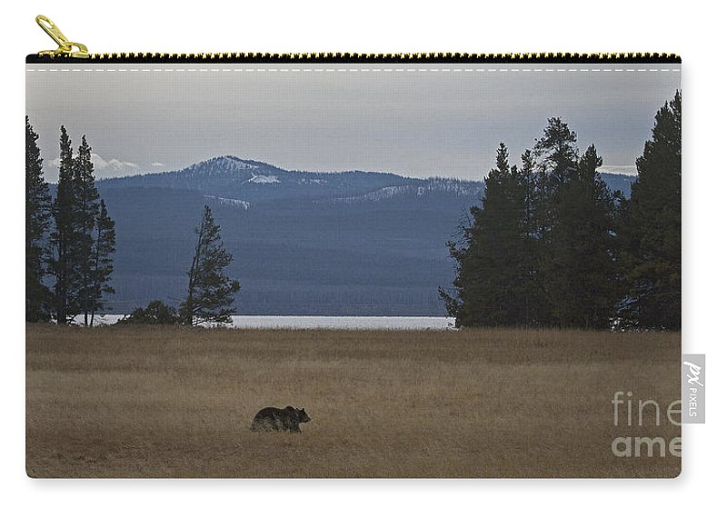 Bear Carry-all Pouch featuring the photograph Grizzly Bear #5270 by J L Woody Wooden