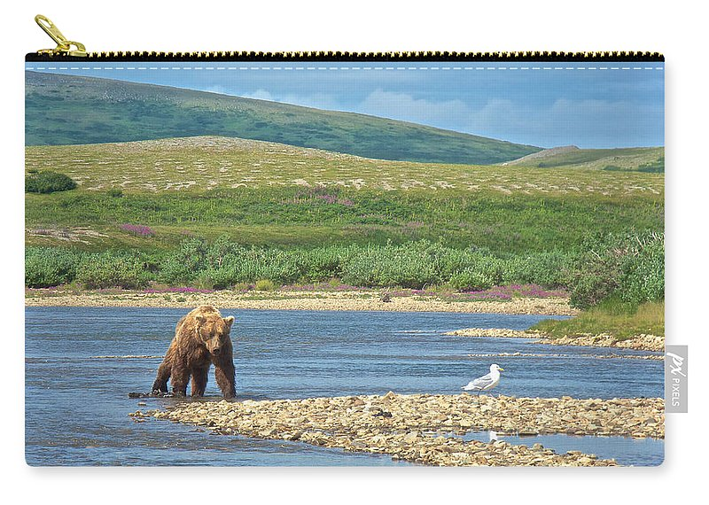 Grizzly Bear Stalking A Gull In The Moraine River Carry-all Pouch featuring the photograph Grizzly Bear Stalking A Gull In The Moraine River In Katmai National Preserve-alaska by Ruth Hager