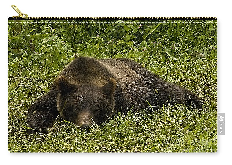 Bear Carry-all Pouch featuring the photograph Grizzly Cub #0863 by J L Woody Wooden