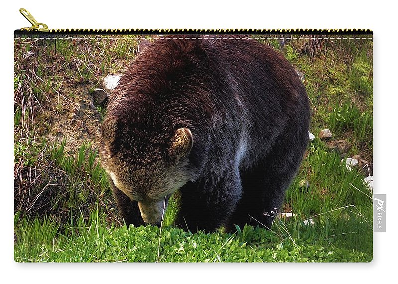 Grizzly Bear Photograph Carry-all Pouch featuring the photograph Grizzly Grazing by Dan Sproul