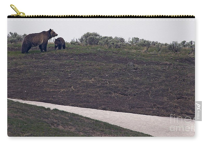 Bear Carry-all Pouch featuring the photograph Grizzly Sow And 2nd Year Cub #3241 by J L Woody Wooden