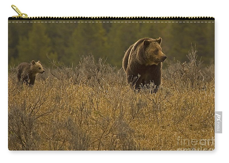 Bear Carry-all Pouch featuring the photograph Grizzly Sow And Cub  #6365 by J L Woody Wooden