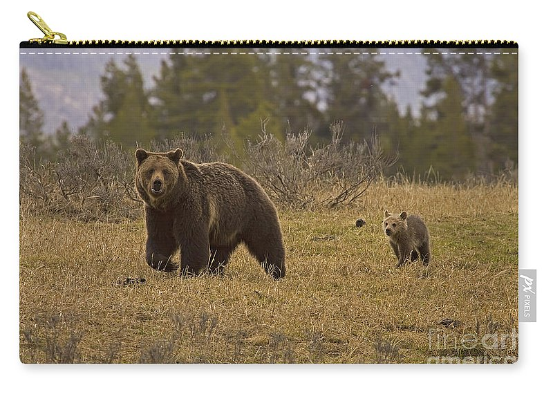Bear Carry-all Pouch featuring the photograph Grizzly Sow And Cub #6382 by J L Woody Wooden