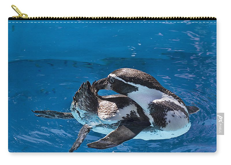 Maui Penguins Carry-all Pouch featuring the photograph Grooming Time by Douglas Barnard