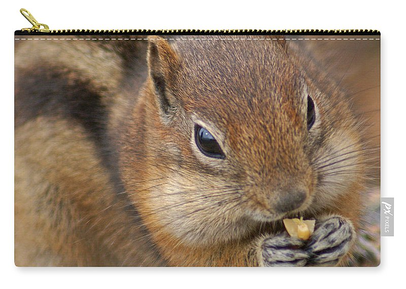 Ground Squirrel Carry-all Pouch featuring the photograph Ground Squirrel by Heather Coen