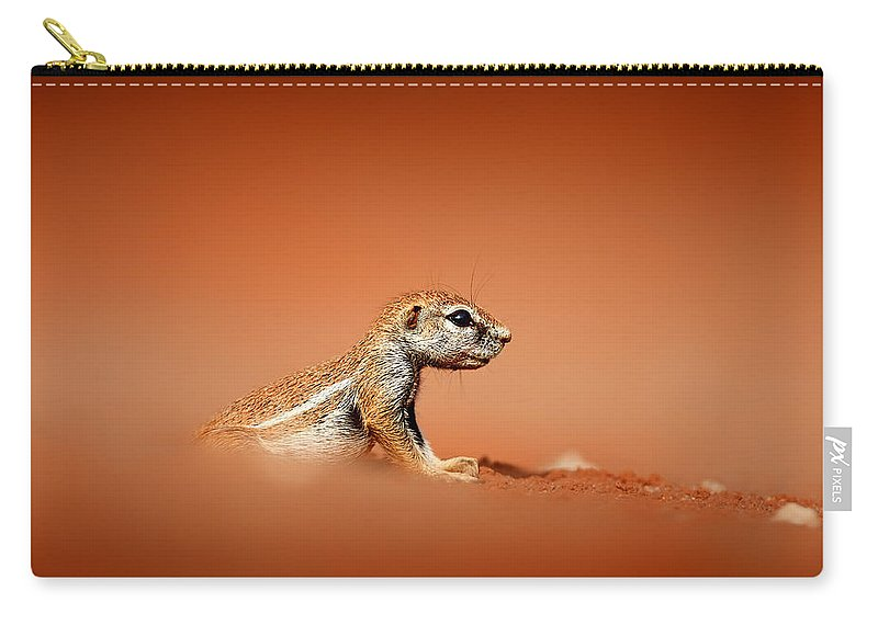 Squirrel Carry-all Pouch featuring the photograph Ground Squirrel On Red Desert Sand by Johan Swanepoel