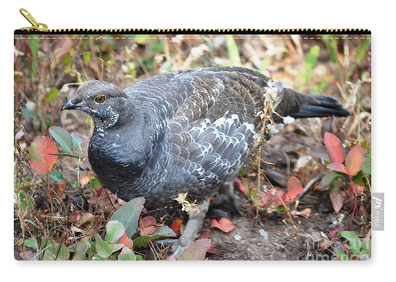 Grouse Carry-all Pouch featuring the photograph Grouse by Deanna Cagle