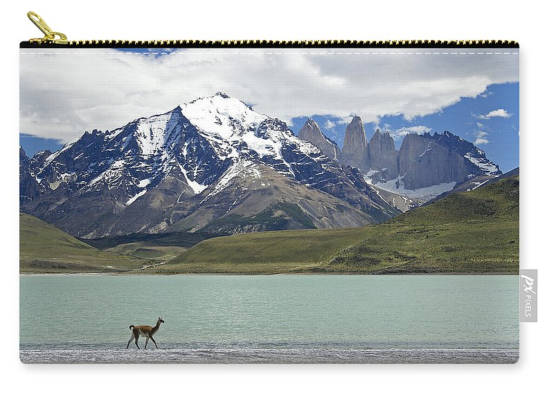 Chile Carry-all Pouch featuring the photograph Guanaco At Laguna Amarga by Michele Burgess