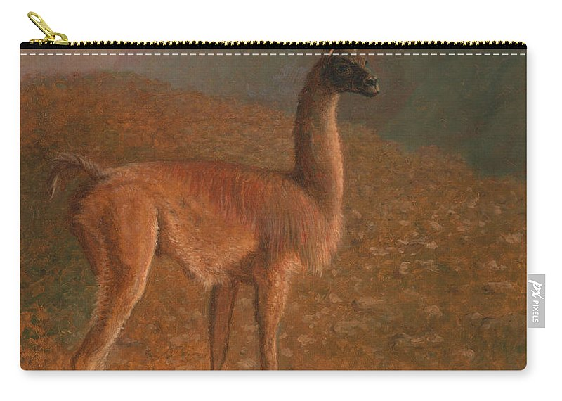 Jacques-laurent Agasse Carry-all Pouch featuring the painting Guanaco by Jacques-Laurent Agasse