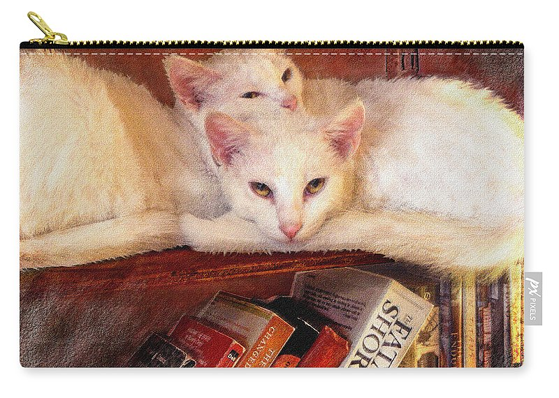 Cat Carry-all Pouch featuring the digital art Guardians Of The Library by Jane Schnetlage