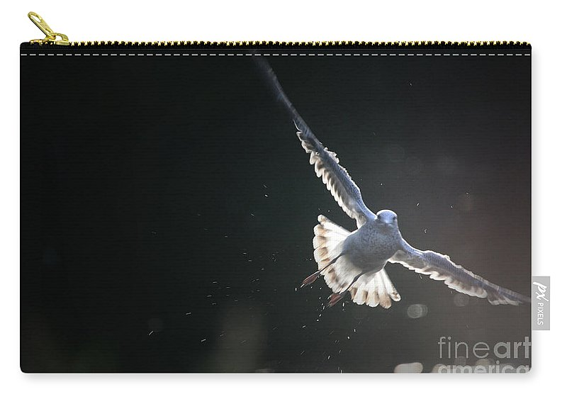 Seagull Carry-all Pouch featuring the photograph Gull In Flight by Karol Livote