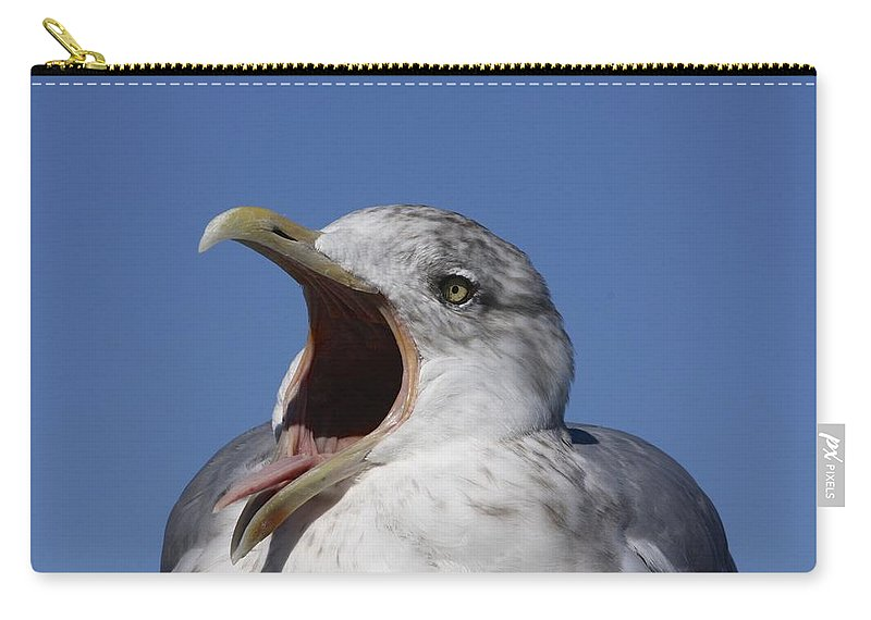 Cape Cod Carry-all Pouch featuring the photograph Gull by Stuart Litoff