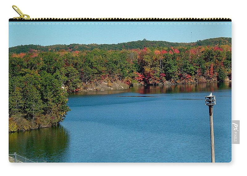 Gull Carry-all Pouch featuring the photograph Gull With Splendid View by Susan Wyman
