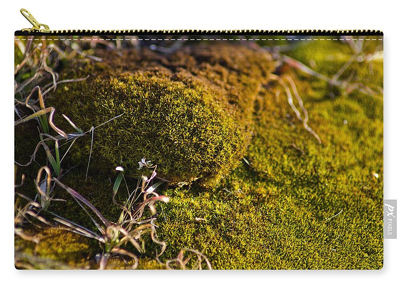 Gunk Carry-all Pouch featuring the photograph Gunk by Joel Loftus