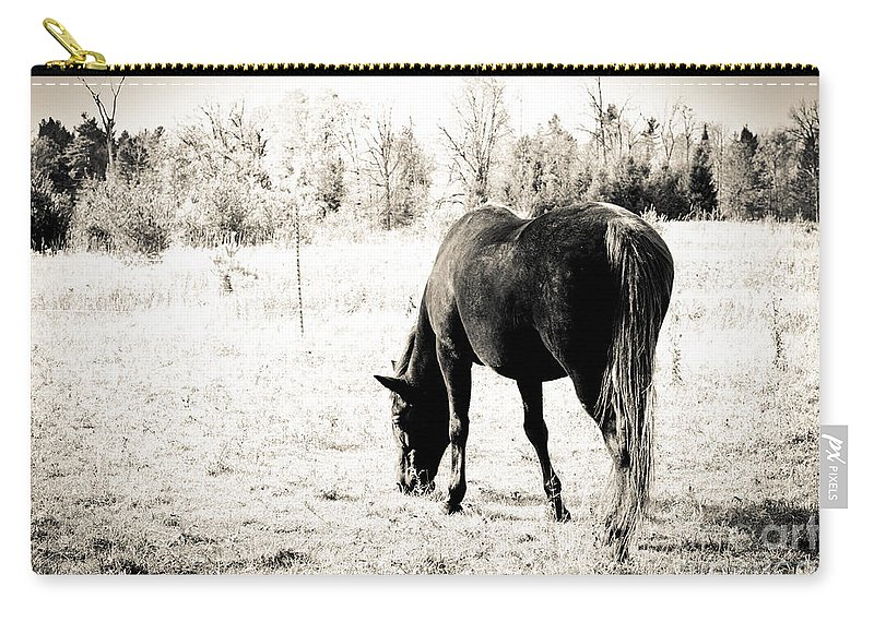 Horses Carry-all Pouch featuring the photograph Gypsy by Cheryl Baxter