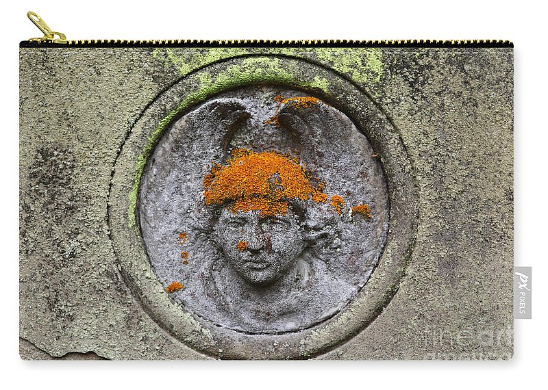 Cemetery Carry-all Pouch featuring the photograph Hair Transplant by James Brunker