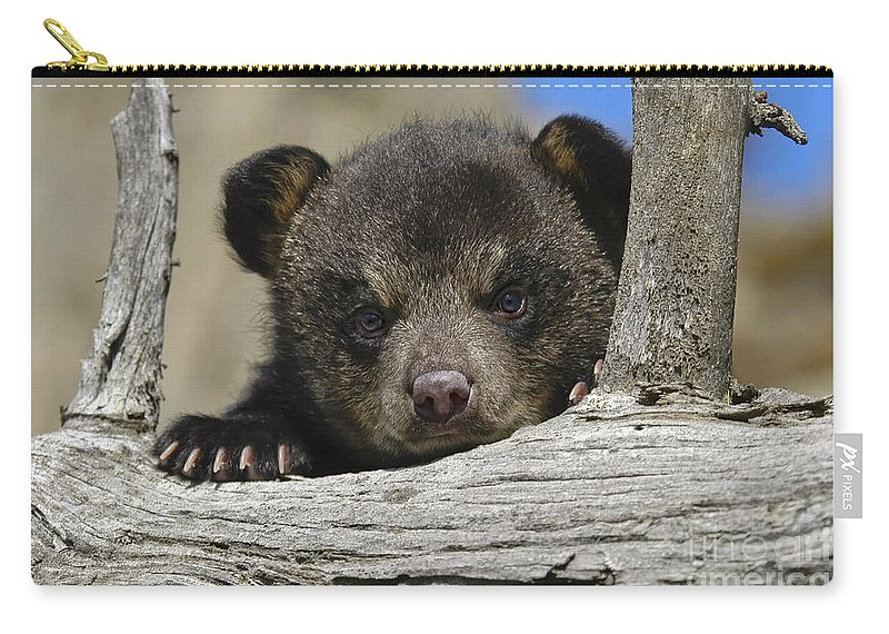 Baby Carry-all Pouch featuring the photograph Handle With Care by Wildlife Fine Art