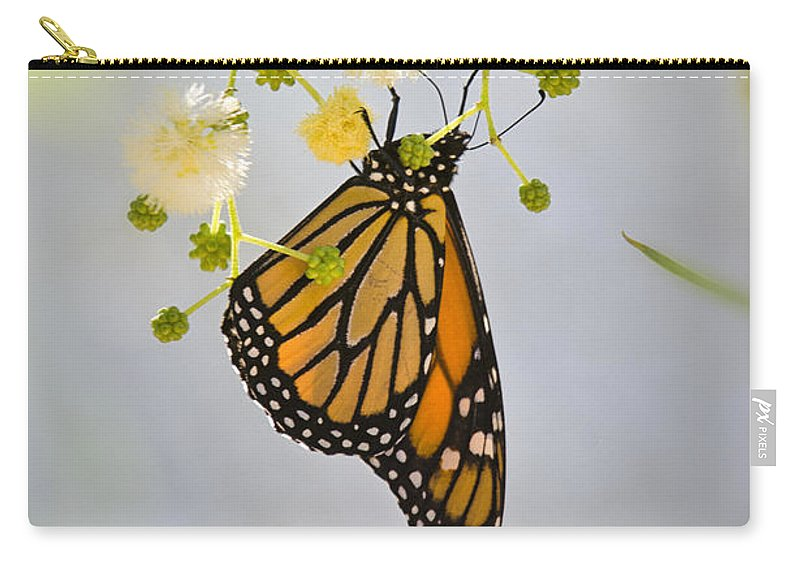 Monarch Butterfly Carry-all Pouch featuring the photograph Hang On by Saija Lehtonen