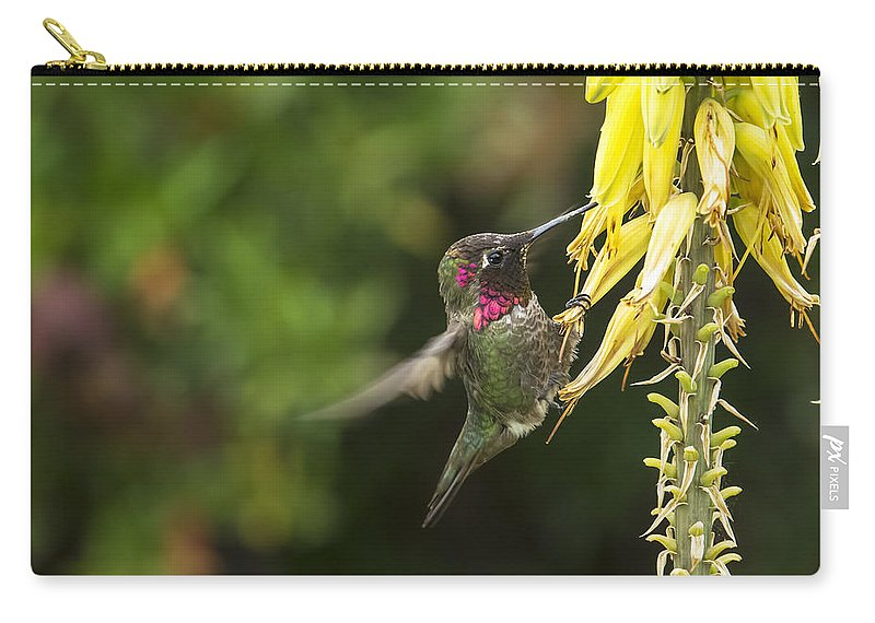 Annas Hummingbird Carry-all Pouch featuring the photograph Hangin For A Meal by Mike Herdering