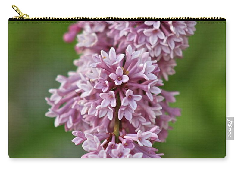 Flower Carry-all Pouch featuring the photograph Hanging Lilac by Rick Monyahan