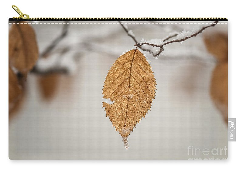 Winter Carry-all Pouch featuring the photograph Hanging On by Claudia Kuhn