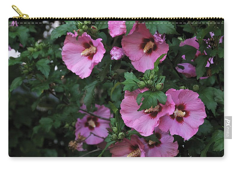 Pink Carry-all Pouch featuring the photograph Hanging With Friends by William Norton