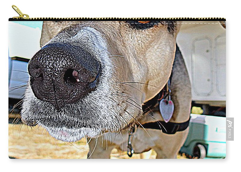 Dog Carry-all Pouch featuring the photograph Hannah by Ed Weidman