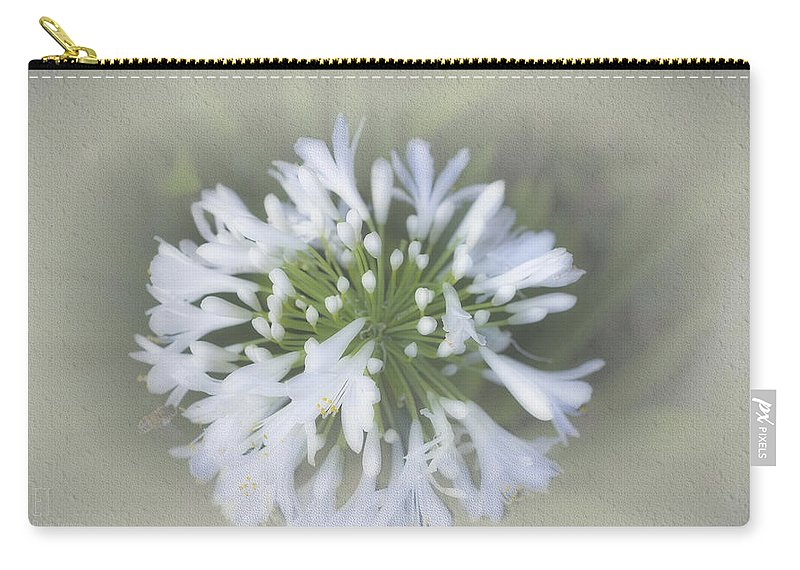 Agapanthus Carry-all Pouch featuring the photograph Hannah by Elaine Teague