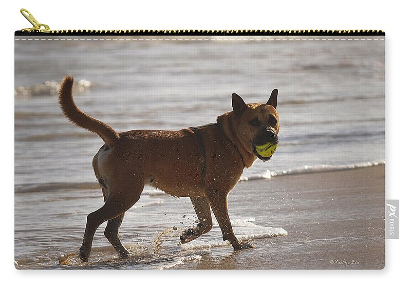 Dog Carry-all Pouch featuring the photograph Happy Dogs 7 by Xueling Zou