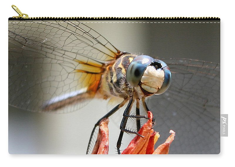 Nature Carry-all Pouch featuring the photograph Happy Dragonfly by William Selander