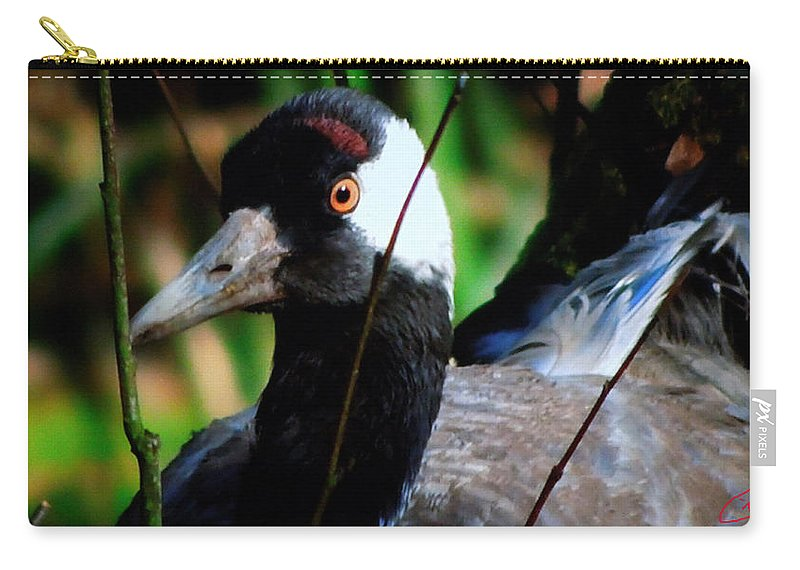 Colette Carry-all Pouch featuring the photograph Happy Duck by Colette V Hera Guggenheim