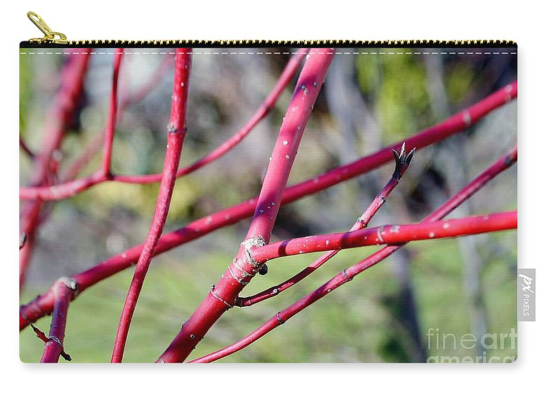Tree Buds Carry-all Pouch featuring the photograph Happy In The Sun by Felicia Tica