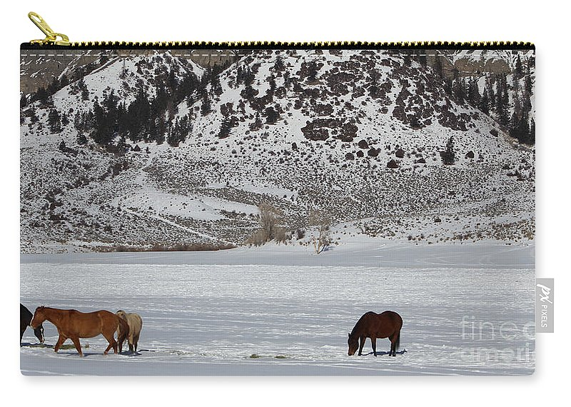 Horses Carry-all Pouch featuring the photograph Harmony by Fiona Kennard
