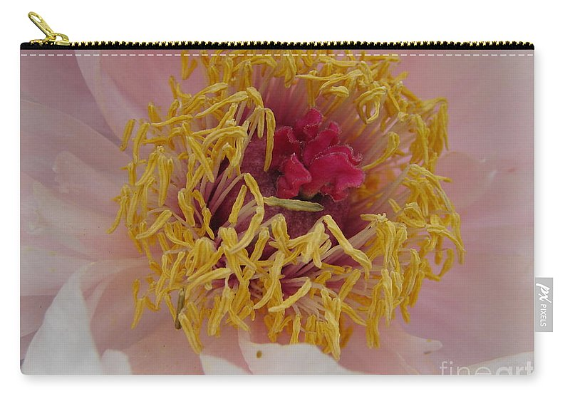 Kates Carry-all Pouch featuring the photograph Harmony by Randy J Heath