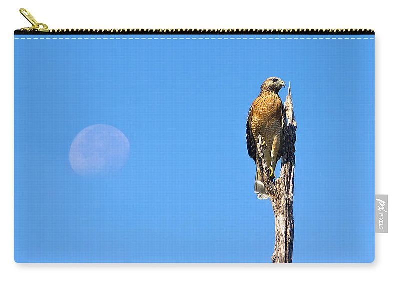 Harrier Carry-all Pouch featuring the photograph Harrier Moon by Mark Andrew Thomas