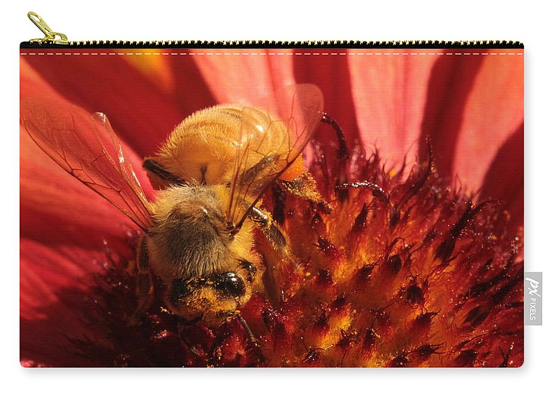 Harvest Carry-all Pouch featuring the photograph Harvest by Connie Handscomb