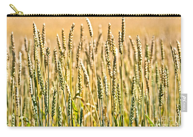 Wheat Carry-all Pouch featuring the photograph Harvest Time by Cheryl Baxter