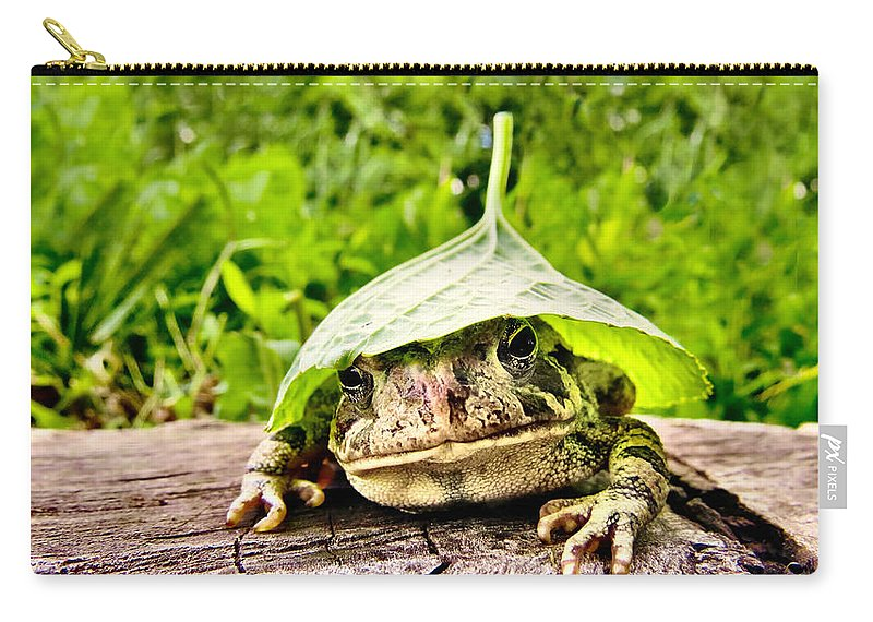 Nature Carry-all Pouch featuring the photograph Hatworks by Art Dingo