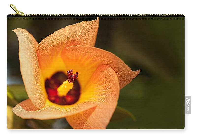 Hawaii Carry-all Pouch featuring the photograph Hawaiian Hau by Dan McManus