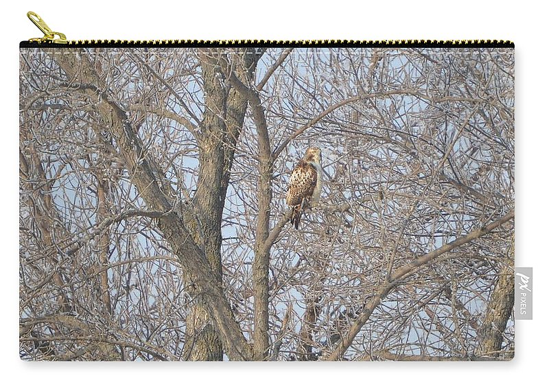 Hawk Carry-all Pouch featuring the photograph Hawkish by Bonfire Photography