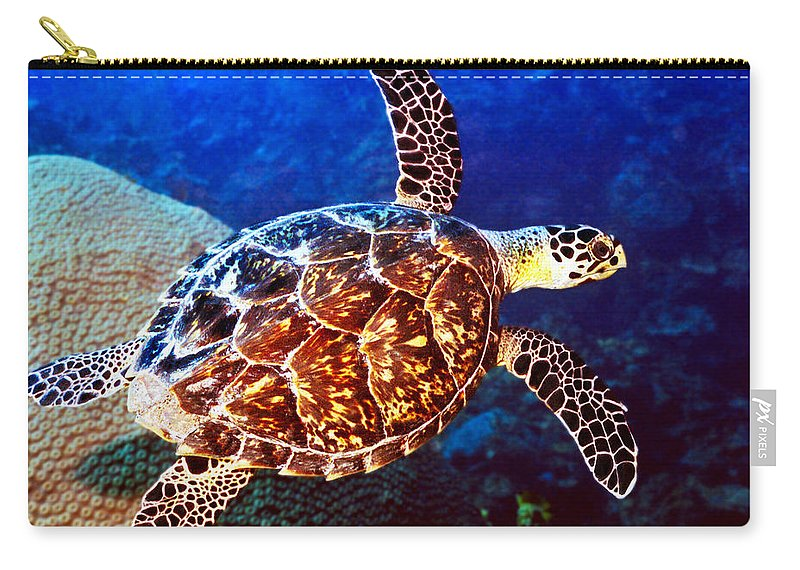 Swimming Sea Turtle Carry-all Pouch featuring the photograph Hawksbill by Jean Noren