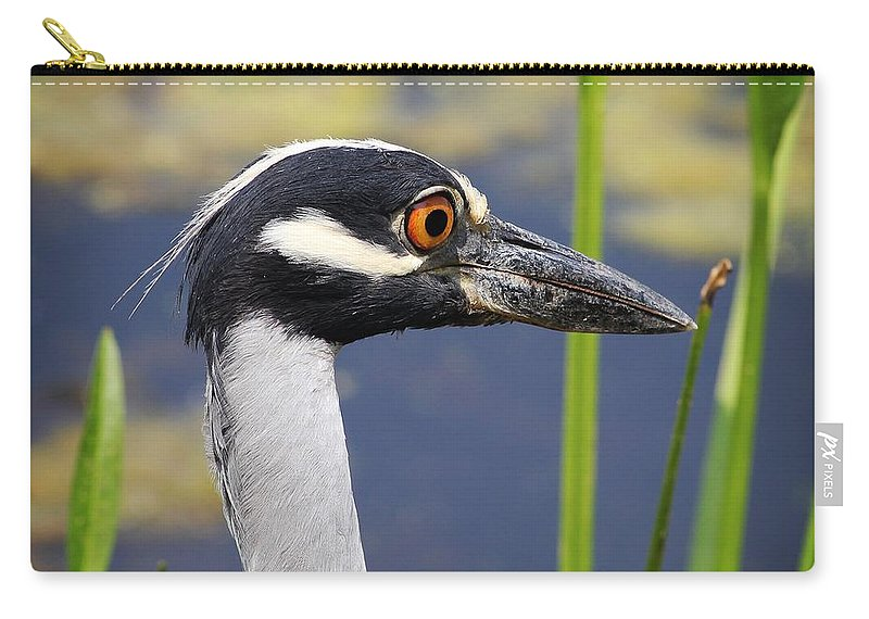 Birds Carry-all Pouch featuring the photograph head shot - Yellow crowned Night Heron by TN Fairey