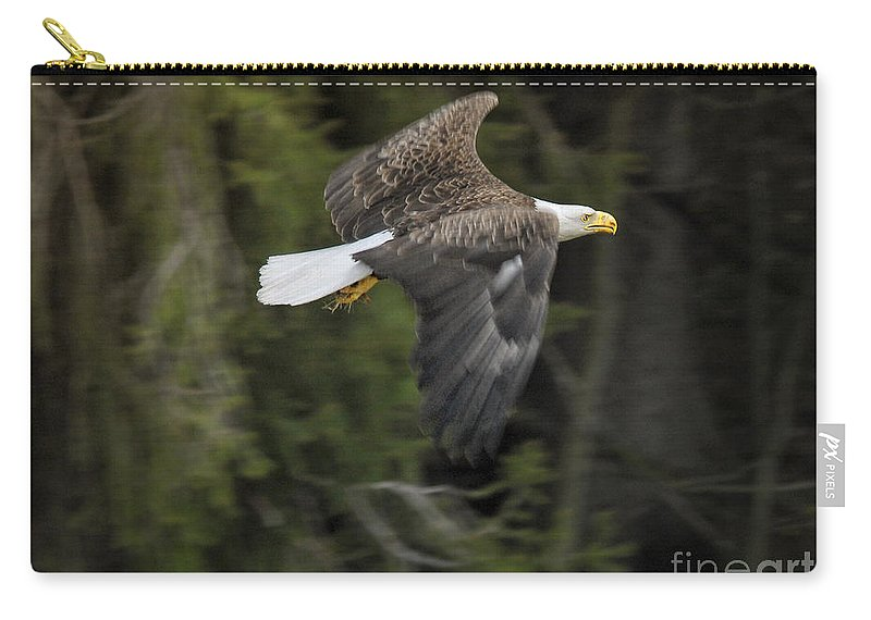 Eagles Carry-all Pouch featuring the photograph Heading Home by Claudia Kuhn