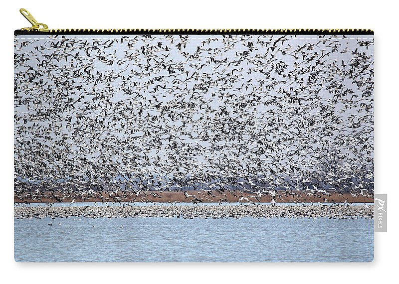 Geese Carry-all Pouch featuring the photograph Heading North by Lynn Sprowl