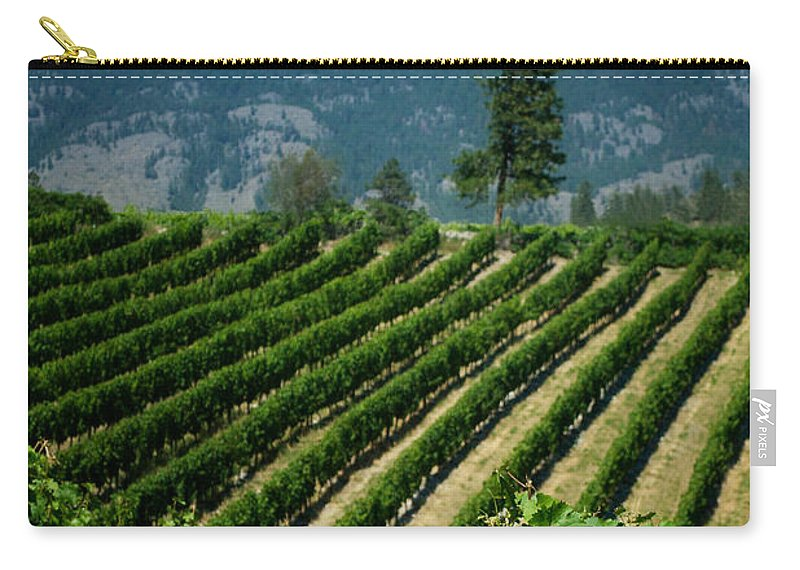 Vineyard Carry-all Pouch featuring the photograph Heard It Through The Grapevine by Lisa Knechtel