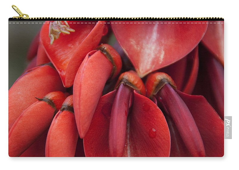 Photography Carry-all Pouch featuring the photograph Hearts by Jackie Farnsworth